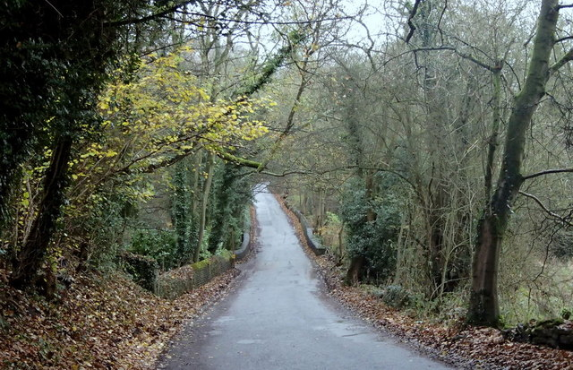 Hillfoot Road between Totley and Dore