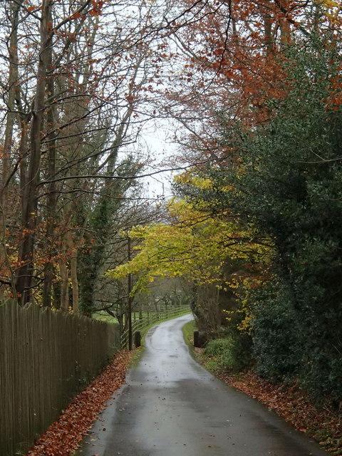 Farm driveway to Avenue Farm