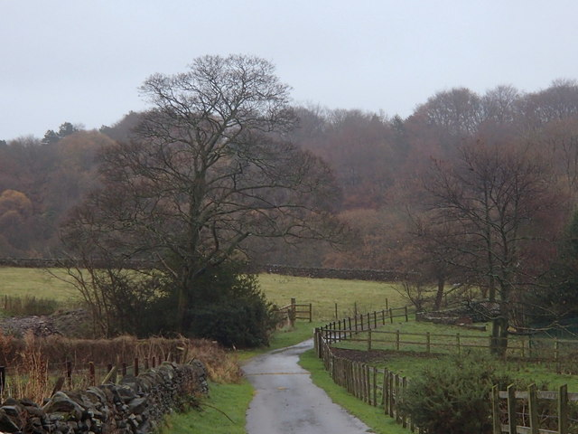Farm track, High Greave