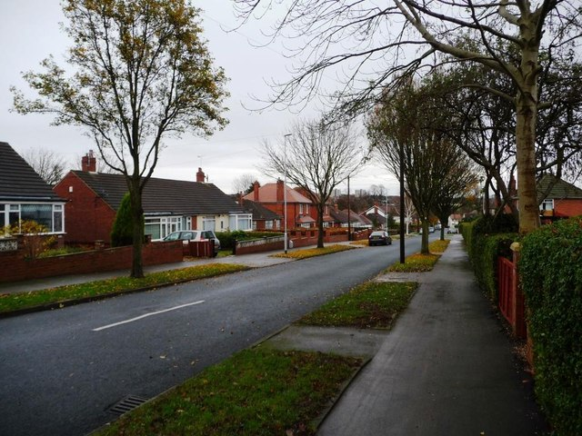 Bungalows on Reinwood Avenue