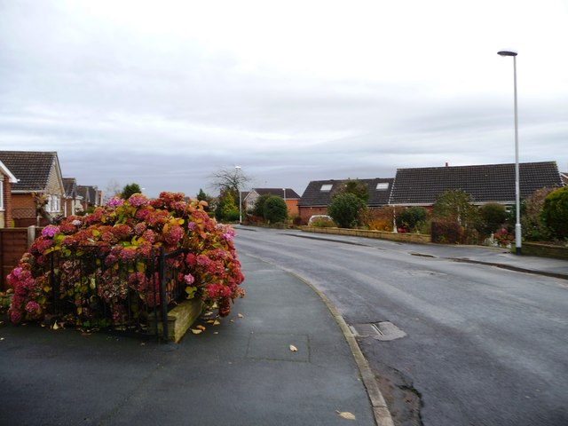 Richmondfield Lane, Barwick in Elmet