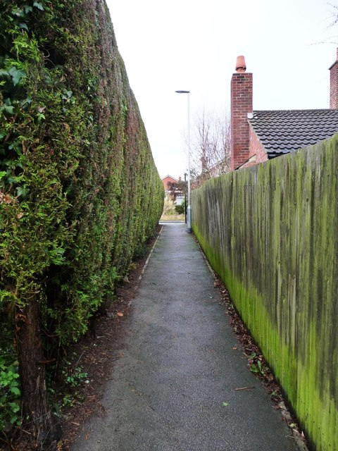 A straight-edged footpath, Barwick in Elmet