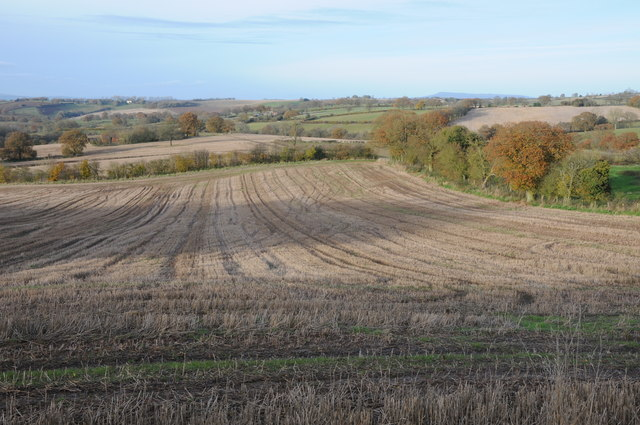 Stubble field near Little Hegdon