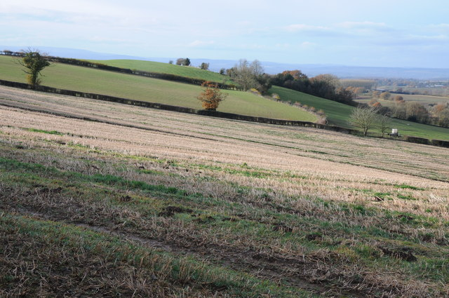 Farmland on Hegdon Hill