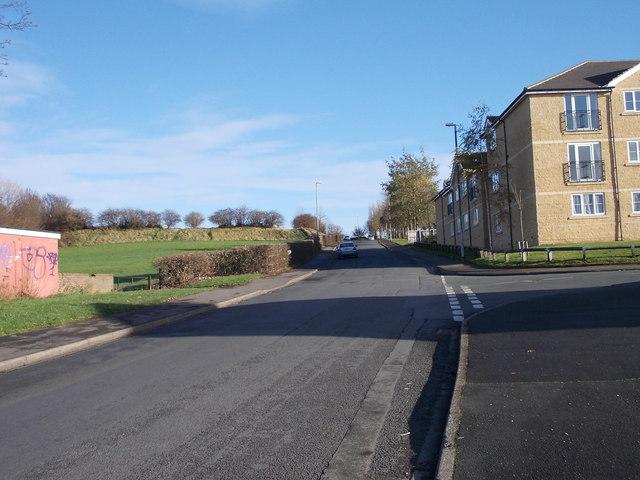 Dale Lane - Nunroyd