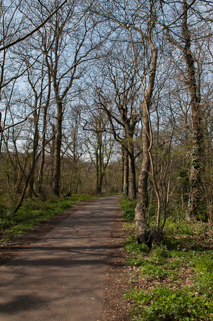 Newstead Wood