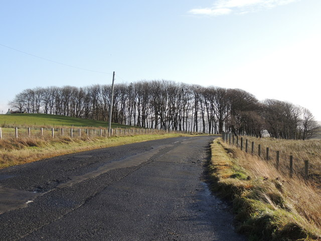 Road to the Barr (B734) near Lanes