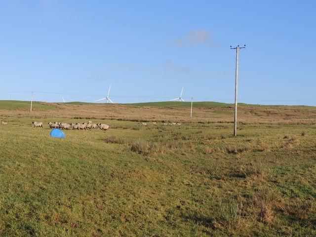 Farmland near Lanes