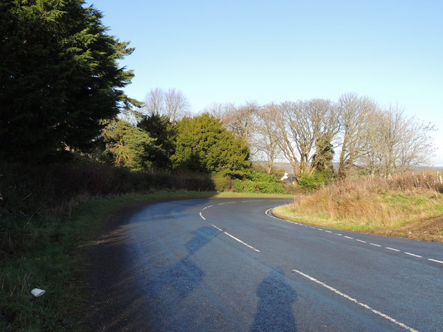 Road to Old Dailly near Penkill