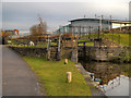 SJ8698 : Ashton Canal, Lock 4 (Beswick Bottom Lock) by David Dixon