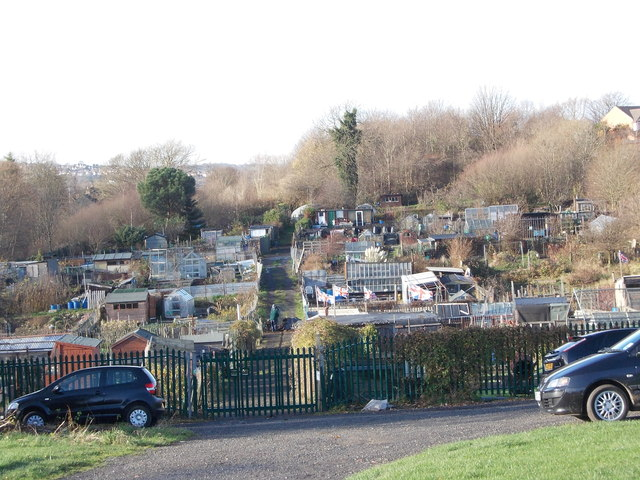 Allotments - off New North Road