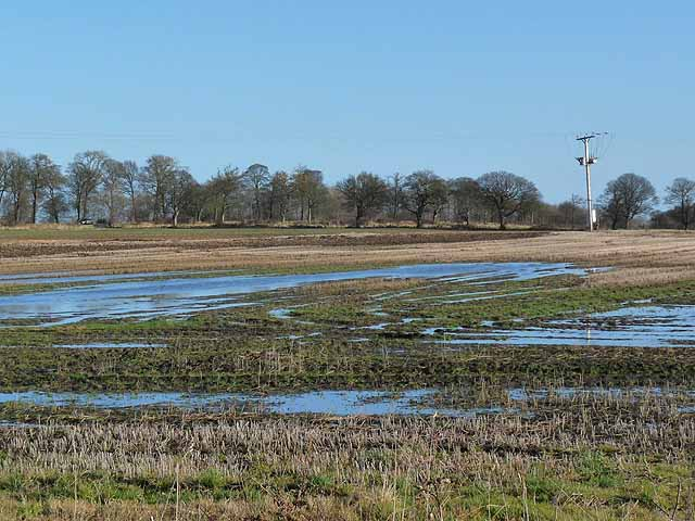 Flooded field near the Military Road