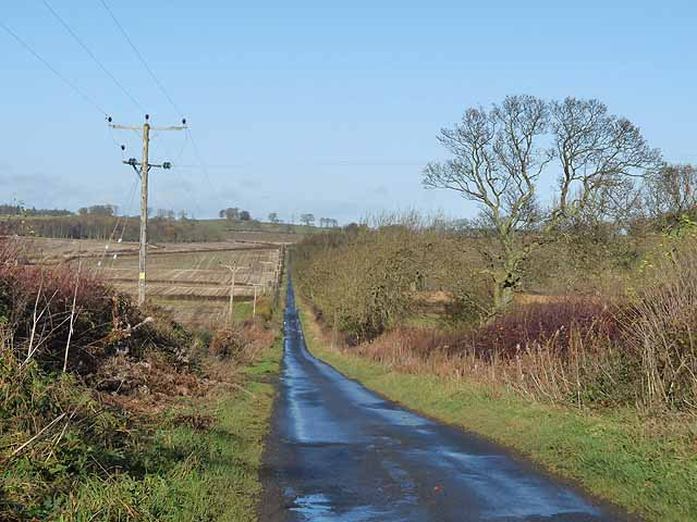 Country lane north of Newton Hall