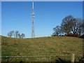 NZ0365 : Newton transmitter mast by Oliver Dixon