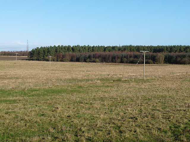 Shildonhill Plantation