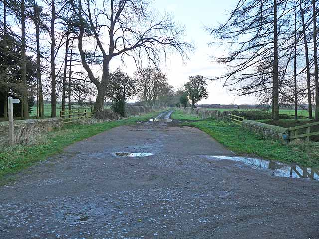 Bridleway to Fenwick Shield
