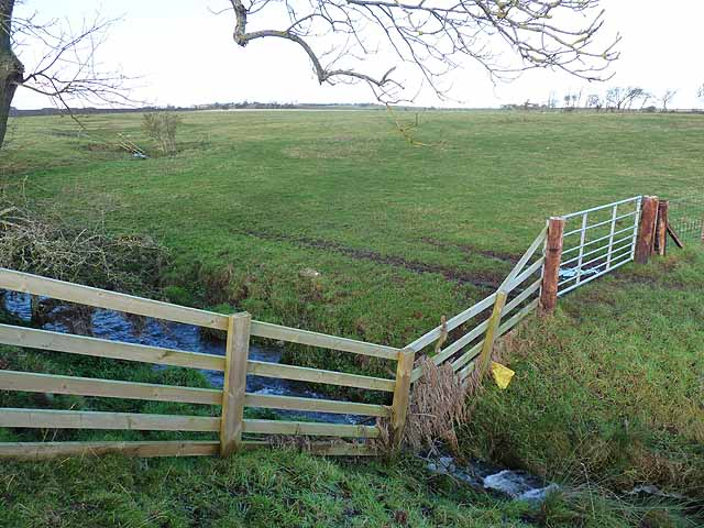 Stream, fence and field near Fenwick