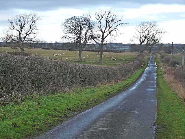 The road to Thornham Hill