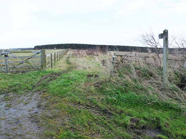 Bridleway from South Fens to Blackheddon Bridge