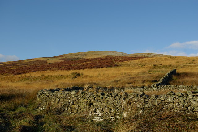Sheepfold below Lang Knowe