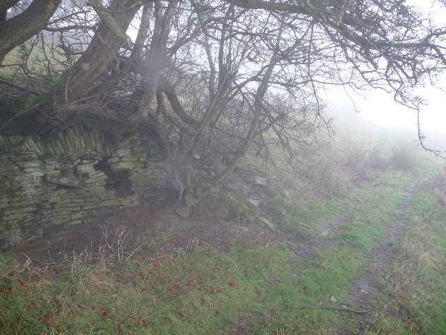 Old stone retaining wall in Cwm Sychan