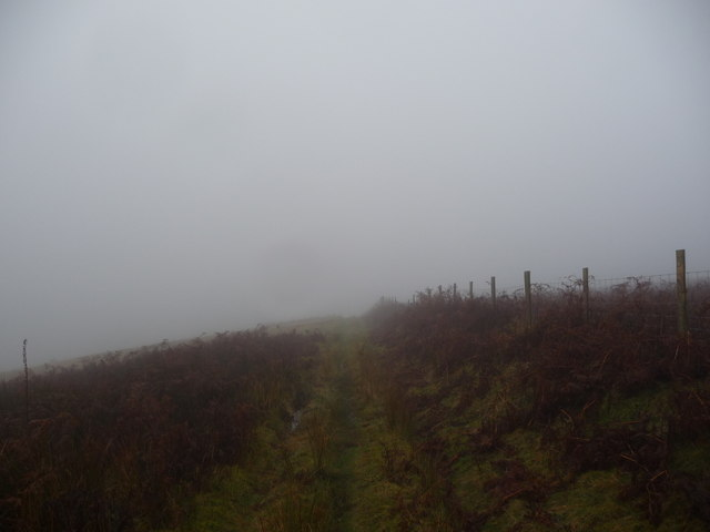 Upland track and path in November