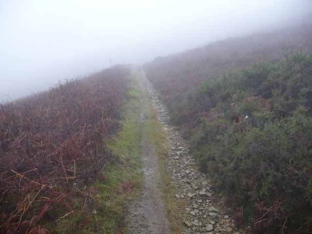 Upland path in Cwm Sychan in November