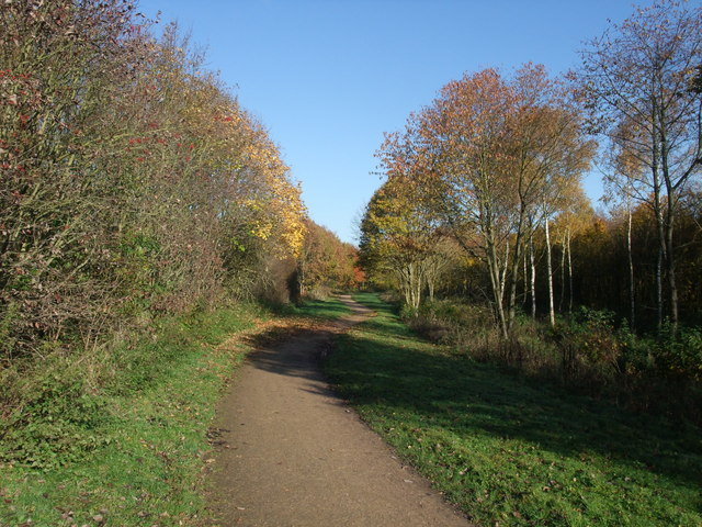 Cycle Route in Bestwood Country Park