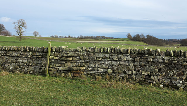 Fields with dry stone wall and stile