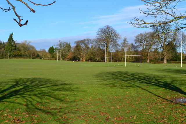 Tree shadows on rugby pitches, Alton