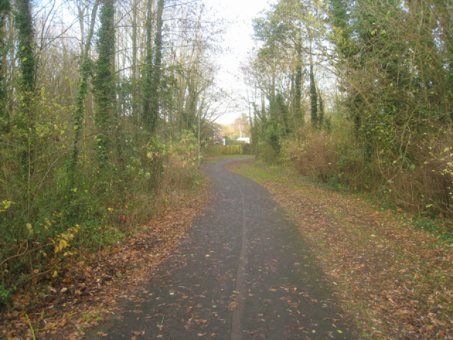 Cycle path by Woodbury Road