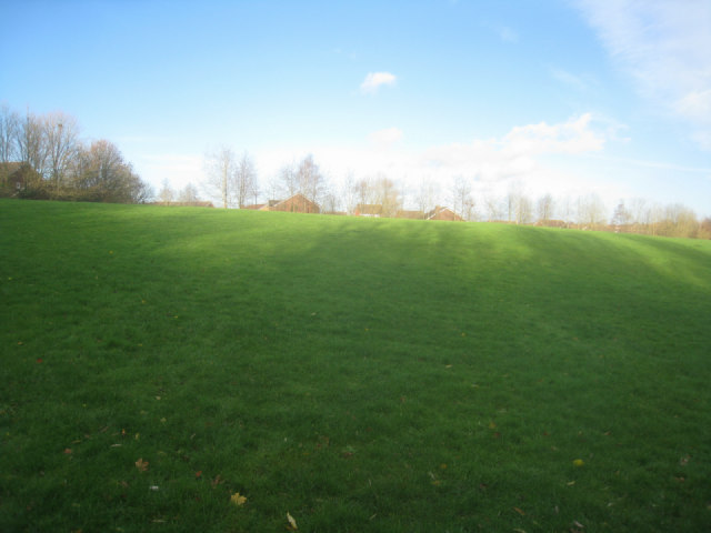 Open space behind Bramdown Heights