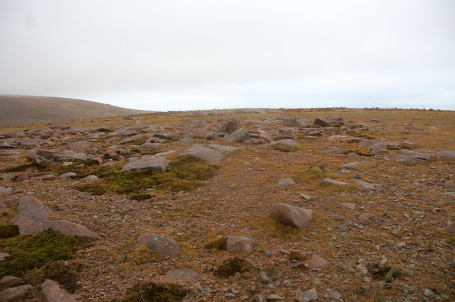 Summit of Mid Field