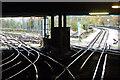 TQ2995 : Under the bridge, Oakwood station : Week 48