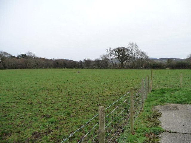 Sheep pasture, north of Bronant Farm