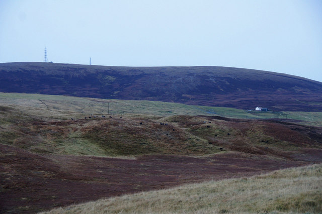 View to Collafirth Hill from the head of Ronas Voe