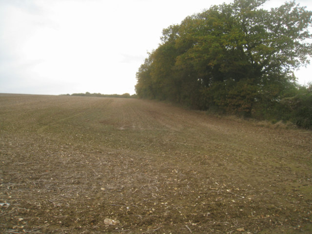 Hither Villands Field (37.5 acres)