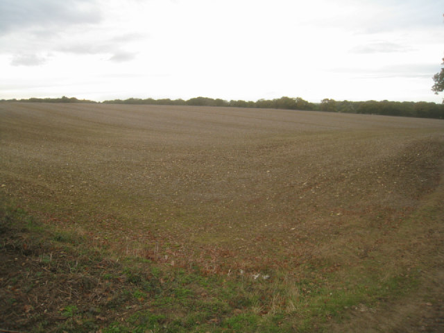 View across Hither Villands Field (37.5 acres)