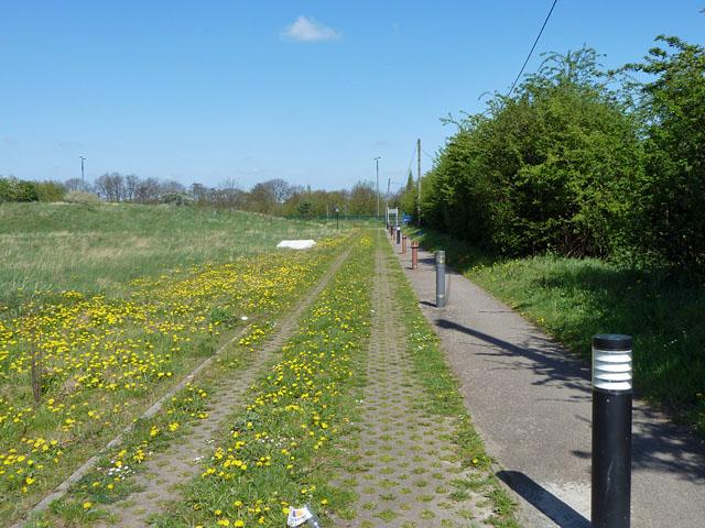Hospital access path
