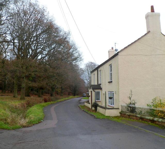Parkend Walk, Coalway
