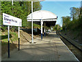 TQ5387 : Emerson Park Halt by Robin Webster