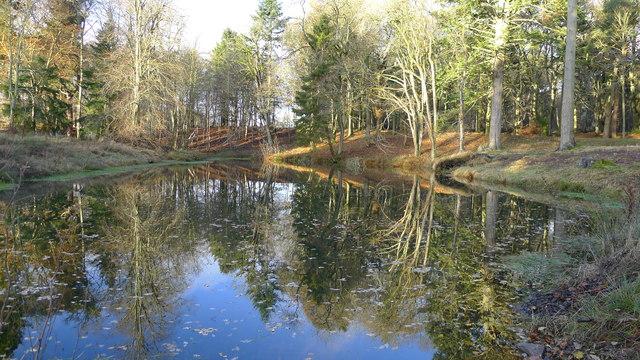 Dunecht Estate Autumn Reflections