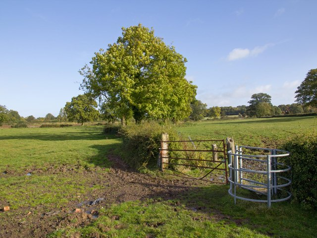 Footpath to Yew Green