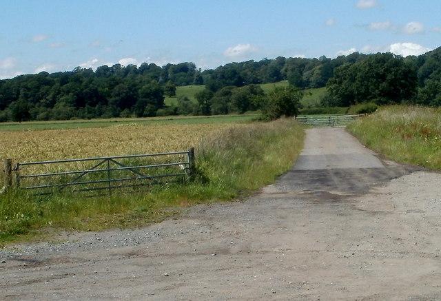 Field gates, Ffairfach