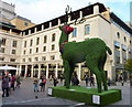 TQ3080 : Reindeer at Covent Garden by pam fray