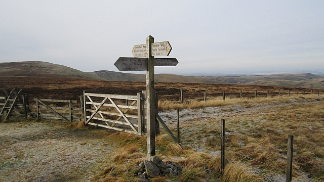 Clennell Street signpost