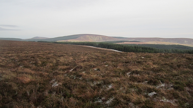 Moorland at the head of Hepden Burn