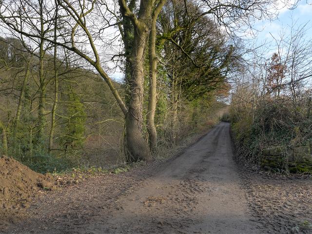 Dale Road