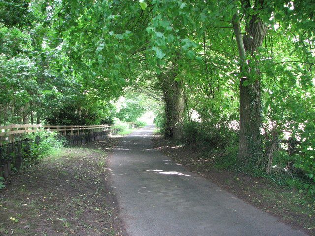 Minor road near Lowford Bridge