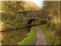 SJ9590 : Peak Forest Canal, Bridge#15 (Rosehill Cutting) by David Dixon